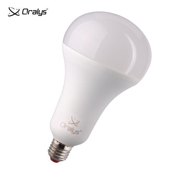 Oralys LED A110