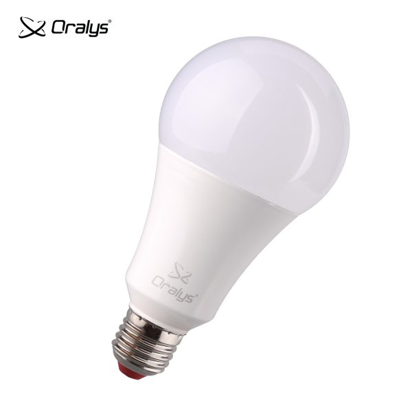 Oralys LED A80